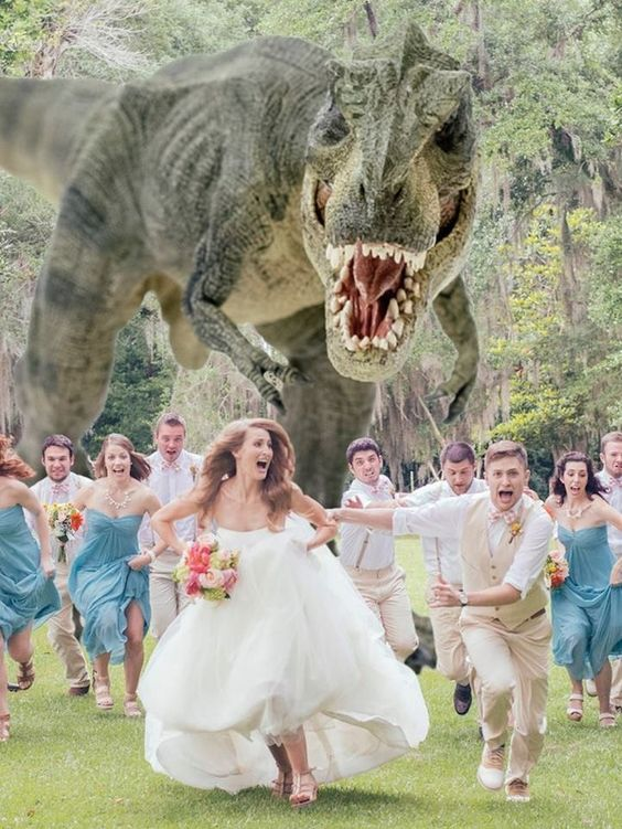 funny wedding photo