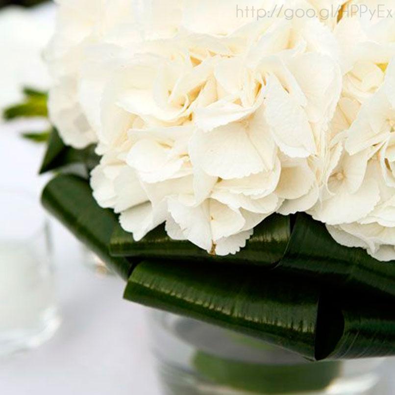 yucatanlove_cypresswedding_26
